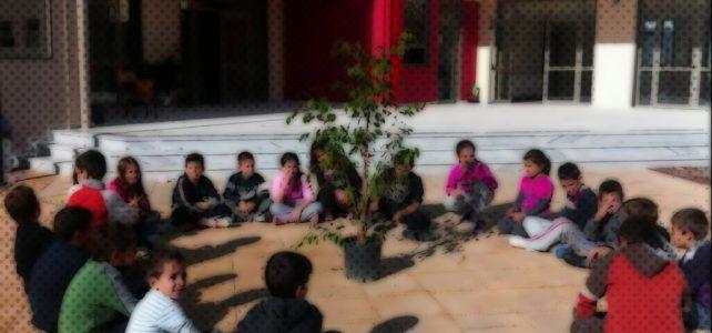 «Ο σχολικός κήπος»