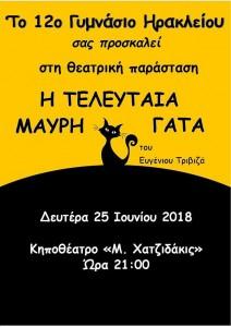 7- Αφίσα - Η τελευταία μαύρη γάτα