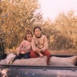Φ29 Δήμητρα-Ειρήνη στο αγροτικό με ελιές