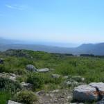 θέα προς το Σαρωνικό