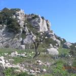 ο βράχος