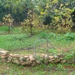 αυτό είναι το πρώτο (καθαρή ξερολιθιά από πωρόλιθους της γύρω περιοχής)
