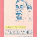 Galligrammes