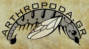 Visit arthropoda.gr, a website dedicated to arthropods